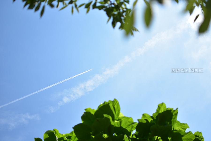170730_sky1.jpg