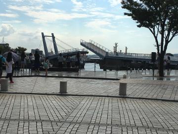 門司港とモグラの被害2