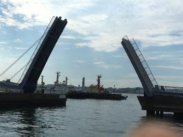 門司港とモグラの被害3