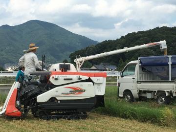 新トラクターで稲刈り6
