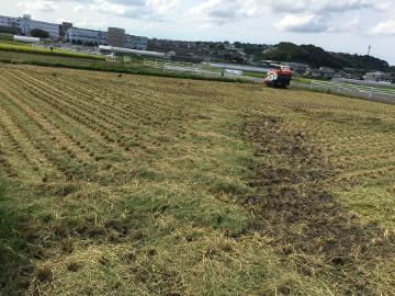 新トラクターで稲刈り10