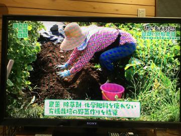 きらり九州放送3