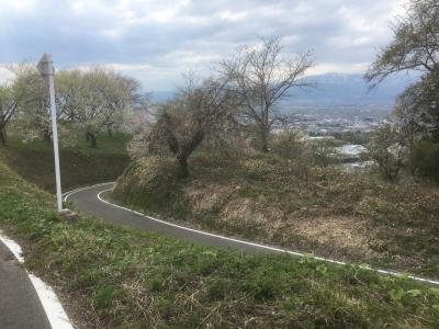 山頂まで続く道路
