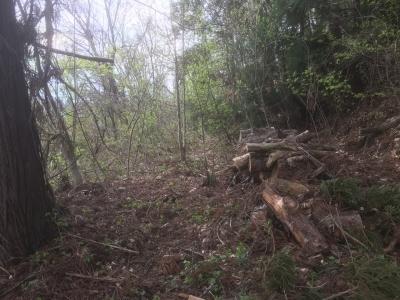 諏訪神社の参道途中にある腰郭状の地形(北)