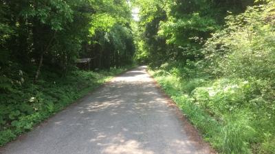 縦断する道路