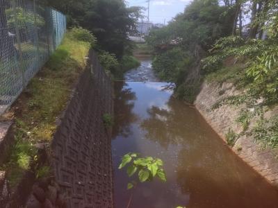 黒瀬神社の北を流れる水路