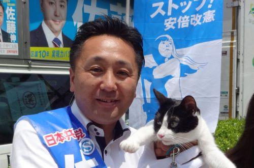 前大田区議会議員 佐藤伸先生 猫好き 500