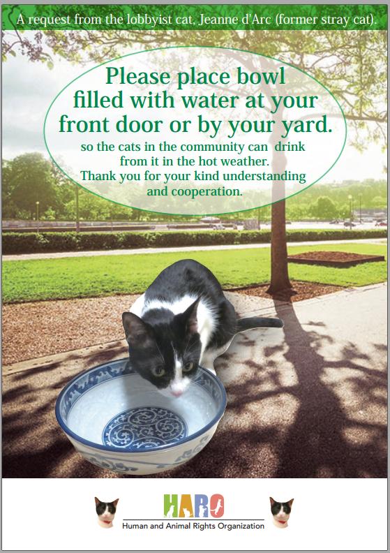EN水を置いてください 緑