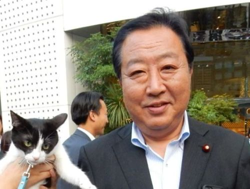 野田元首相と猫ジャンヌ 500