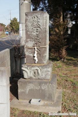 赤沼神社(春日部市赤沼)17