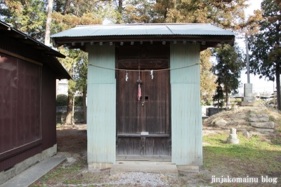 赤沼神社(春日部市赤沼)16
