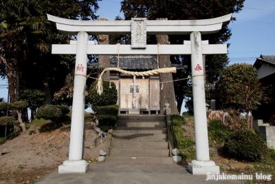 日枝神社(春日部市赤崎)2