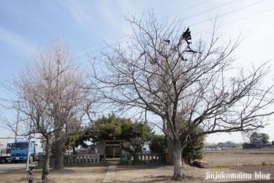 雷電神社(春日部市永沼)1