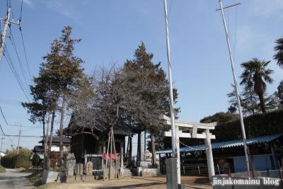 雷電神社(春日部市下柳)1