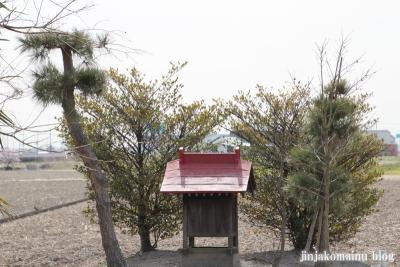 香取神社(春日部市不動院野)7