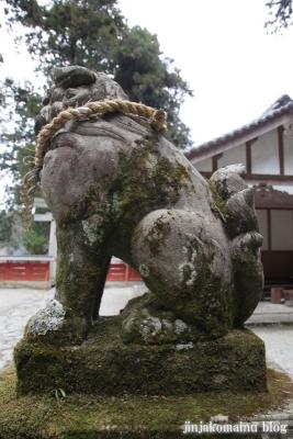 高天彦神社(御所市北窪)28