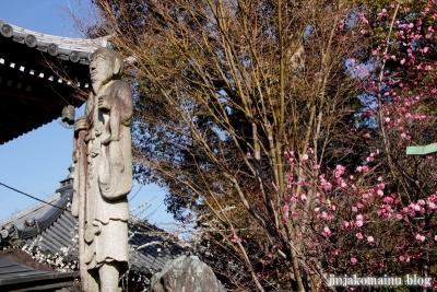 久米寺(橿原市久米町)9