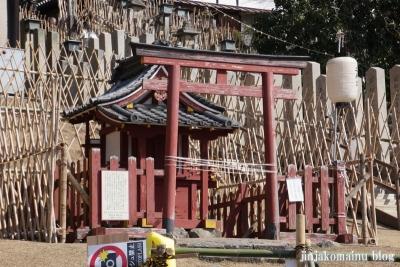 東大寺境内19