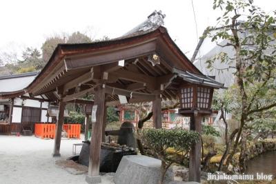 上賀茂神社(京都市北区上賀茂本山)19