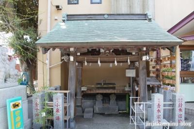 菊名神社(横浜市港北区菊名)7