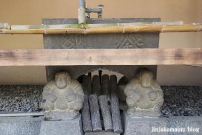 菊名神社(横浜市港北区菊名)8