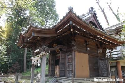 八杉神社(横浜市港北区大豆戸町)12