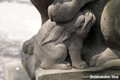 八杉神社(横浜市港北区大豆戸町)30