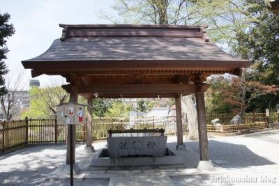 熊野神社(横浜市港北区師岡町)14