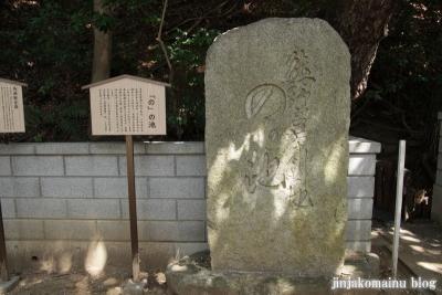 熊野神社(横浜市港北区師岡町)24