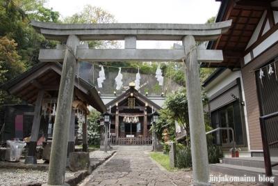 杉山神社(横浜市港北区新羽町)8