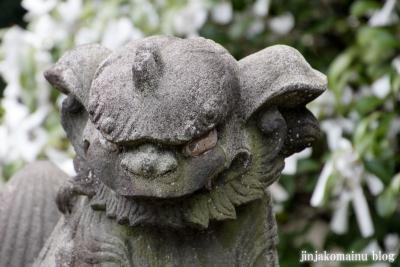 杉山神社(横浜市港北区新羽町)29