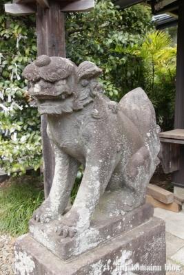 杉山神社(横浜市港北区新羽町)20