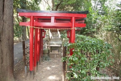 杉山神社(横浜市港北区新羽町)13