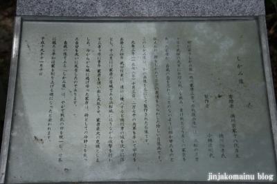 龍城神社(岡崎市康生町)32