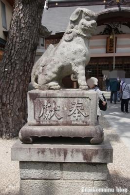 龍城神社(岡崎市康生町)14