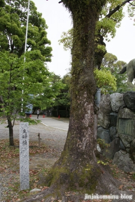 真清田神社(一宮市真清田)12