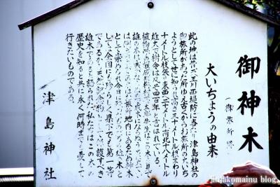 津島神社(津島市神明町)2