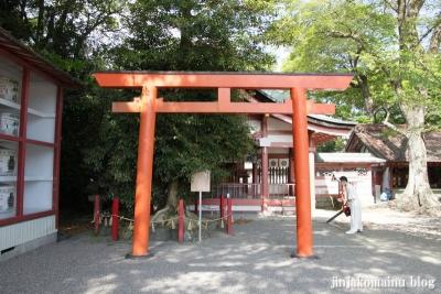 津島神社(津島市神明町)61