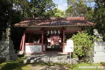 津島神社(津島市神明町)16