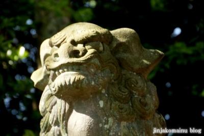 津島神社(津島市神明町)30