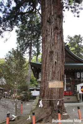 賀茂神社(江八幡市加茂町)8