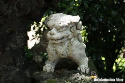 洲崎神社(横浜市神奈川区青木町)9
