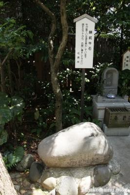 平沼神社(横浜市西区平沼町)19