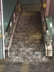 ゲリラ豪雨の歩道橋