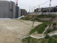 桜の杜敷地2
