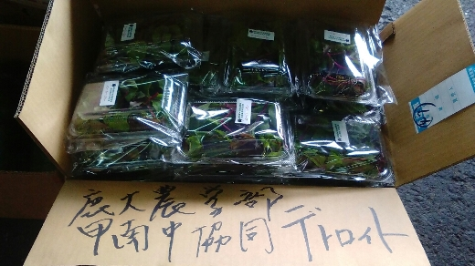 blog290524甲南中 (8)