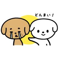 donnmai_20170517215304cbe.png