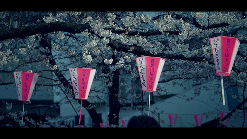 目黒川桜まつり_9_s