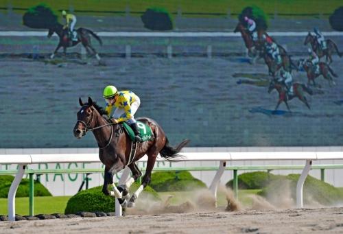 【競馬ネタ】あっ…この一番人気こないなって馬の特徴