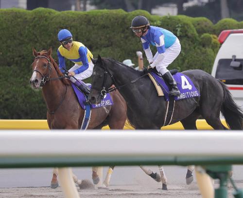 【安田記念】武豊騎手「僕の判断ミス。良いレースが出来なかった。」